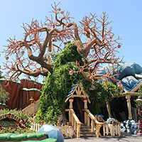 Chip 'n Dale's Treehouse
