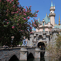 Sleeping Beauty Castle Bridge